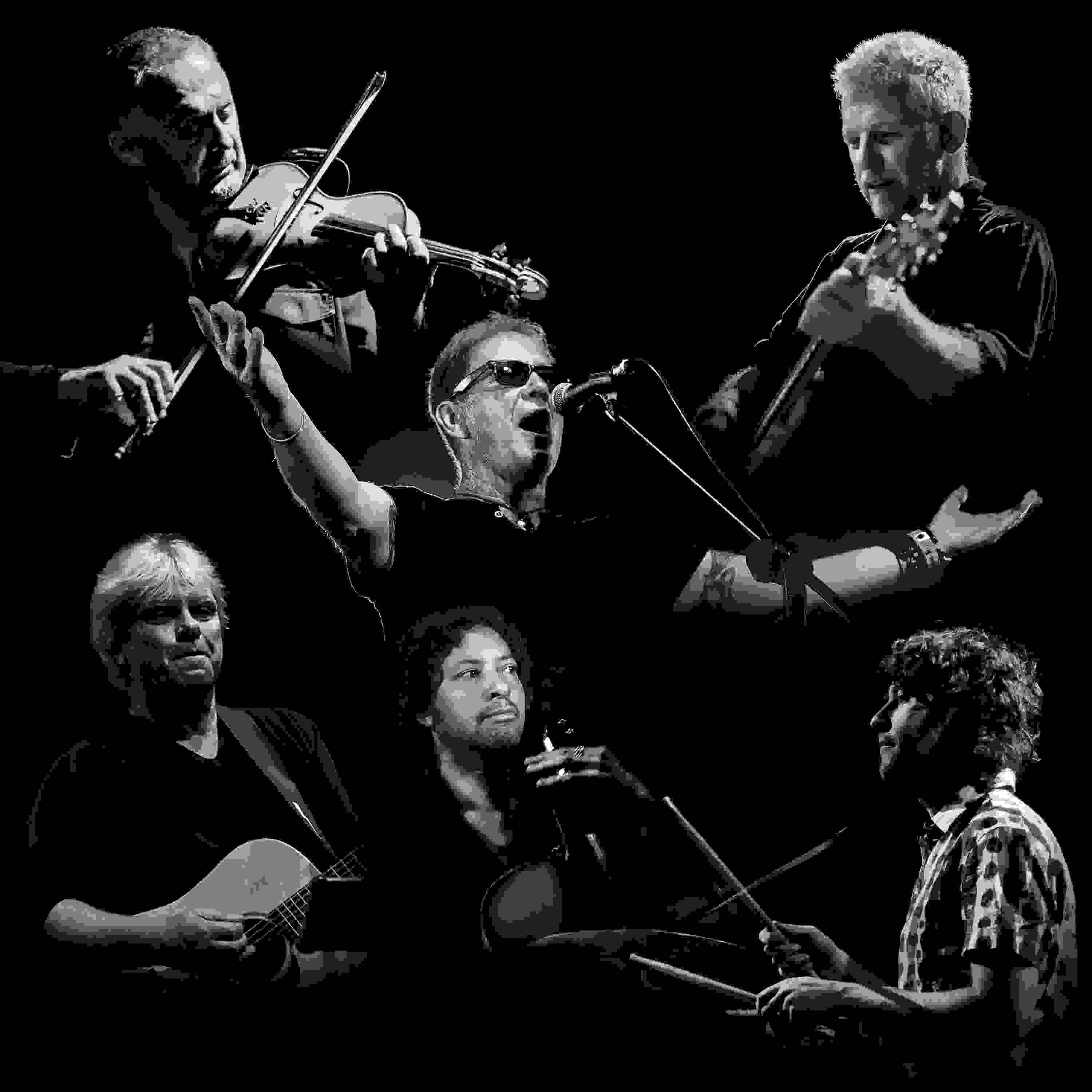 Oysterband - 40th Celebration Special